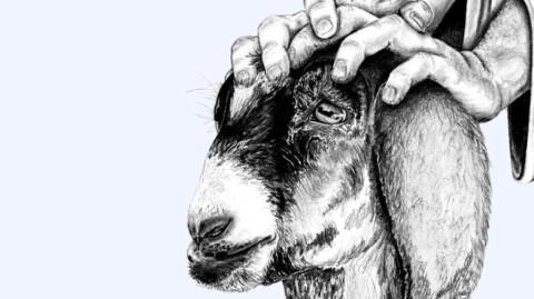 Scapegoat - Worship Links - Monday Smile